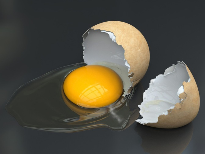 An eggs-ellent recipe for disaster